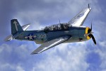 WWII warbird -flyin' hard-n-high