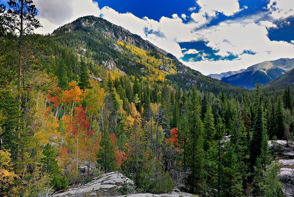 Rocky Mountain Fall Colors Image
