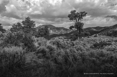 Great Sand Dune Ponderosa by Doug Mayhew | Madographer